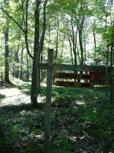 Deer Wood